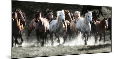 Renegades-Lisa Dearing-Mounted Photographic Print