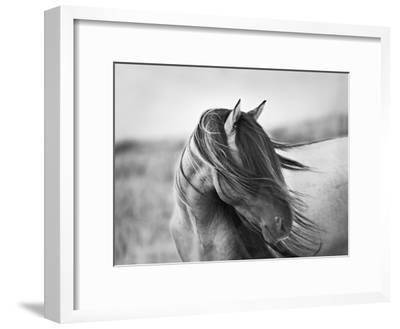 Fierce Grace-Tony Stromberg-Framed Premium Photographic Print