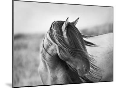 Fierce Grace-Tony Stromberg-Mounted Premium Photographic Print
