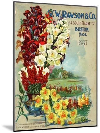 Seed Catalog Captions (2012): W.W. Rawson and Co, Boston, Massachusetts, 1897--Mounted Art Print