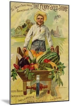Seed Catalogues: The Perry Seed Store. Syracuse, NY, 1893--Mounted Art Print