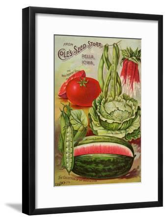 Seed Catalog Captions (2012): Cole's Seed Store, Pella, Iowa, Garden, Farm and Flower Seeds, 1896--Framed Art Print