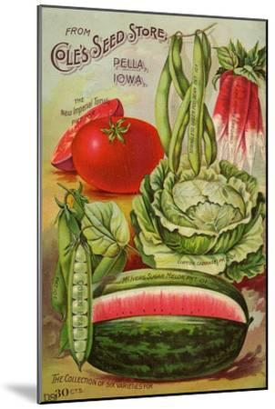 Seed Catalog Captions (2012): Cole's Seed Store, Pella, Iowa, Garden, Farm and Flower Seeds, 1896--Mounted Art Print