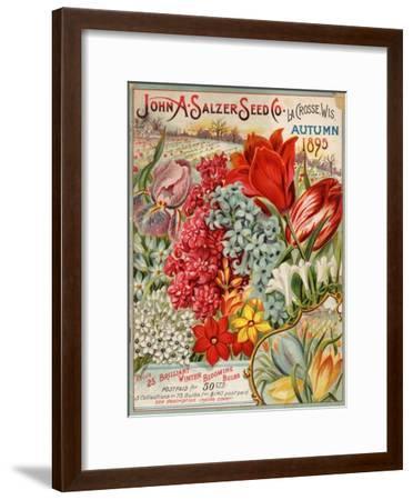 Seed Catalog Captions (2012): John A. Salzer Seed Co. La Crosse, Wisconsin, Autumn 1895--Framed Art Print