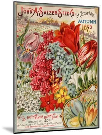 Seed Catalog Captions (2012): John A. Salzer Seed Co. La Crosse, Wisconsin, Autumn 1895--Mounted Art Print
