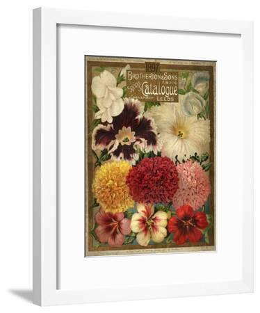 1897 Brotherton and Sons Spring Catalogue--Framed Art Print