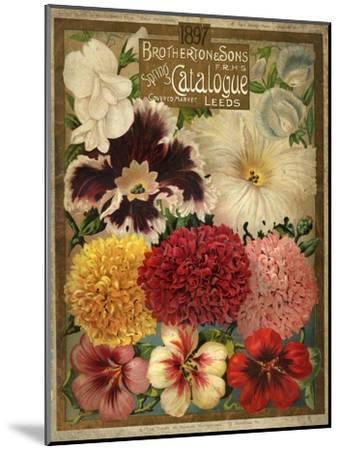 1897 Brotherton and Sons Spring Catalogue--Mounted Art Print