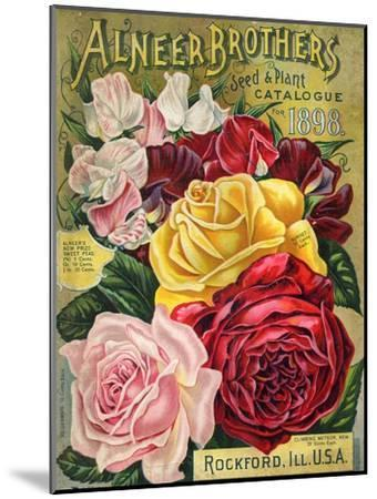Alneer Brothers Seed and Plant Catalogue, 1898--Mounted Art Print