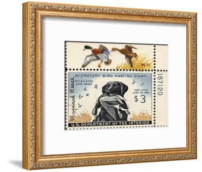 National Postal Museum: 3 Dollar Duck Stamp Remarque--Framed Art Print