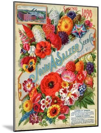 Seed Catalogues: John A. Salzer Seed Co. La Crosse, Wisconsin, Spring 1898--Mounted Art Print