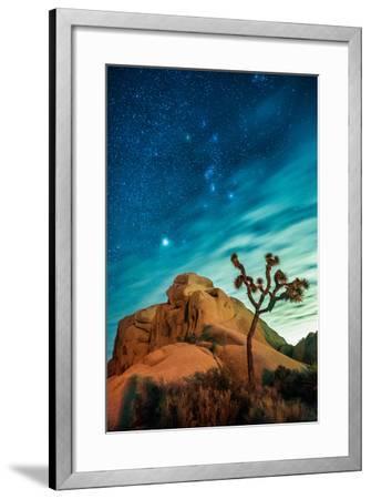 Watching The Stars Dance In Joshua Tree National Park-Daniel Kuras-Framed Photographic Print