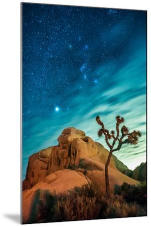 Watching The Stars Dance In Joshua Tree National Park-Daniel Kuras-Mounted Photographic Print