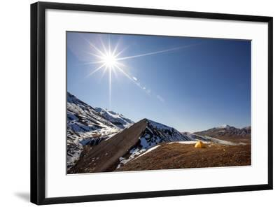 Yellow Tent And Sunstar-Lindsay Daniels-Framed Photographic Print
