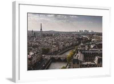 View Of Paris From Notre Dame-Lindsay Daniels-Framed Photographic Print