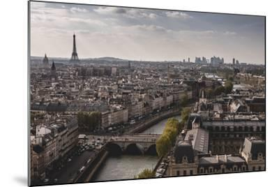 View Of Paris From Notre Dame-Lindsay Daniels-Mounted Photographic Print