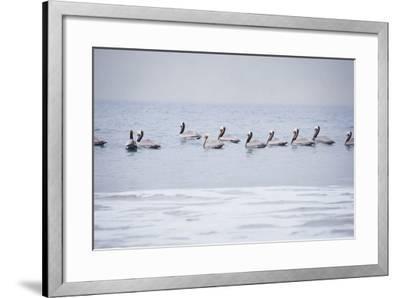 Misty Morning I-Elizabeth Urquhart-Framed Photo