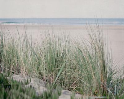 Steps To The Beach IV-Elizabeth Urquhart-Framed Photo