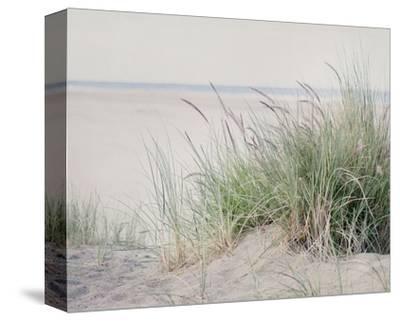 Steps To The Beach II-Elizabeth Urquhart-Stretched Canvas Print