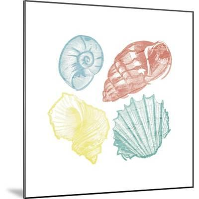 Soft Color Shells Mate-Jace Grey-Mounted Art Print