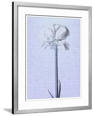 Denim Floral 2-Kimberly Allen-Framed Art Print