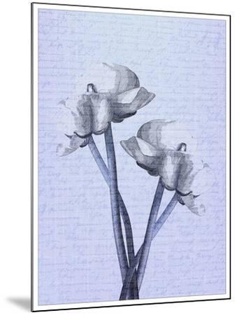 Denim Floral 1-Kimberly Allen-Mounted Art Print