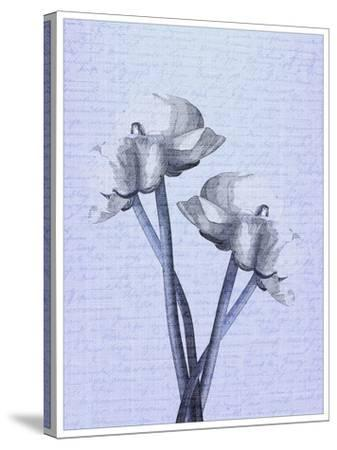 Denim Floral 1-Kimberly Allen-Stretched Canvas Print