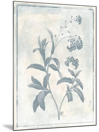 Sky Floral Two Cleaner-Jace Grey-Mounted Art Print