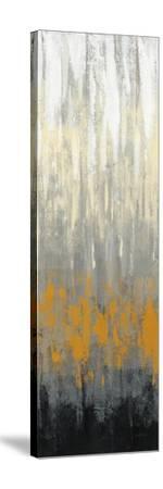 Rain on the Asphalt II-Silvia Vassileva-Stretched Canvas Print