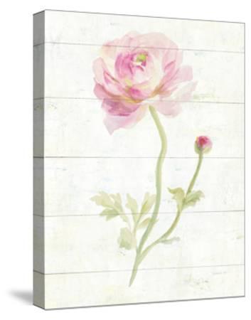 June Blooms I-Danhui Nai-Stretched Canvas Print