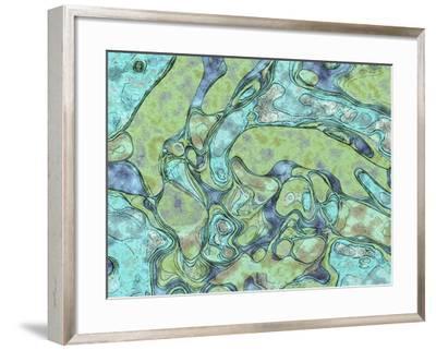 Refresh-Ruth Palmer-Framed Art Print