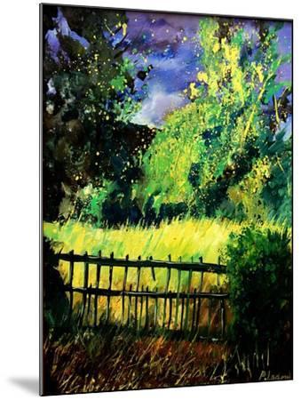 Old fence-Pol Ledent-Mounted Art Print