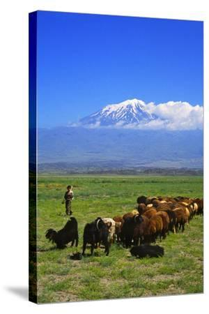 Mount Ararat-Charles Bowman-Stretched Canvas Print