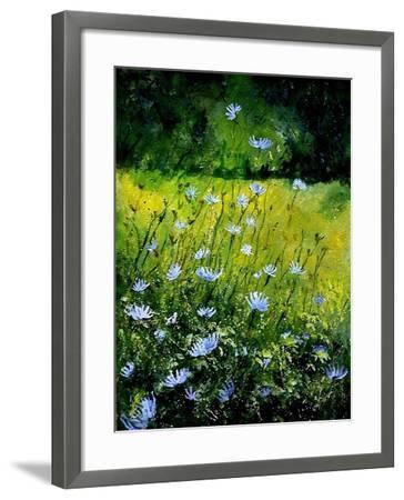 Chicorees flowers-Pol Ledent-Framed Art Print
