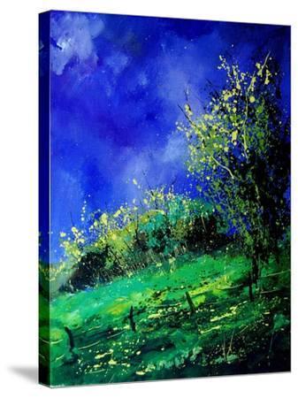 Spring 459050-Pol Ledent-Stretched Canvas Print