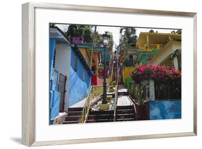 Colorful Houses, Gurabo, Puerto Rico-George Oze-Framed Photographic Print