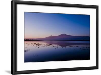 Kilimanjaro II-Charles Bowman-Framed Photographic Print