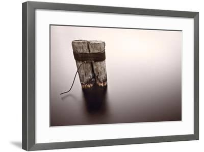 Wisconsin River Post Pile-Steve Gadomski-Framed Photographic Print