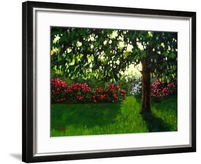Early Morning Light-Patty Baker-Framed Art Print