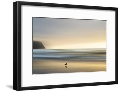 Morning Visit-Marvin Pelkey-Framed Premium Photographic Print