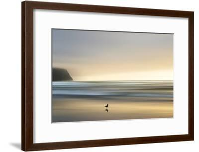 Morning Visit-Marvin Pelkey-Framed Photographic Print
