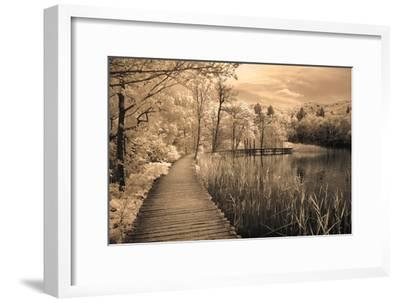Print-Ily Szilagyi-Framed Photographic Print