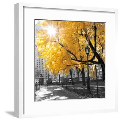 Park Pretty II-Assaf Frank-Framed Premium Photographic Print
