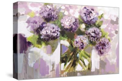 Blush Hydrangea-Amanda J^ Brooks-Stretched Canvas Print