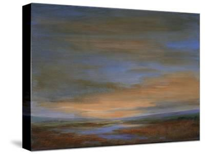 Wetlands Sunset-Sheila Finch-Stretched Canvas Print
