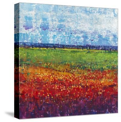 On a Summer Day II-Tim OToole-Stretched Canvas Print