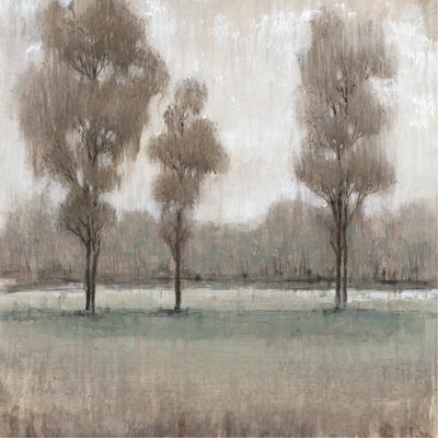 Shimmering Trees II-Tim OToole-Framed Premium Giclee Print