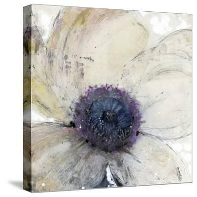 Flower Flow II-Tim O'toole-Stretched Canvas Print