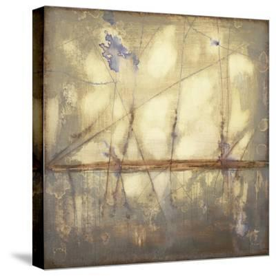 Topography II-Jennifer Goldberger-Stretched Canvas Print