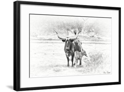 Longhorn & Baby-David Drost-Framed Photographic Print
