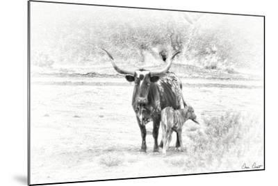 Longhorn & Baby-David Drost-Mounted Photographic Print